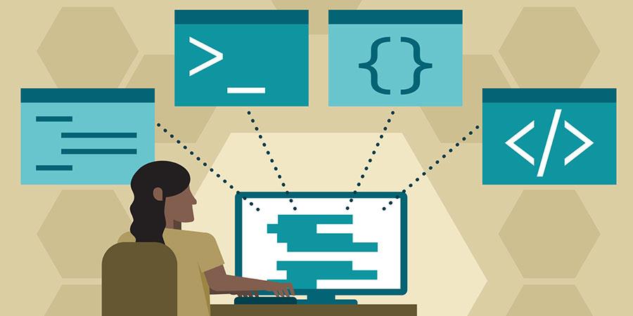 Development Programming